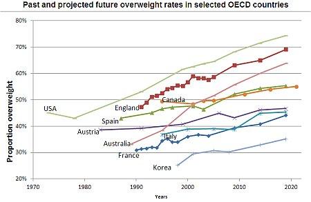 Fettleibigkeit Entwicklung